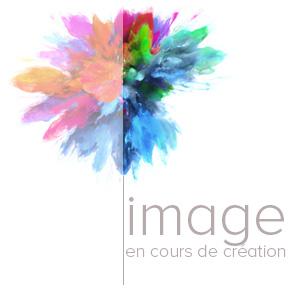 Fixation de vidéoprojecteur universelle Micro-réglages CHIEF RSMAU Blanc