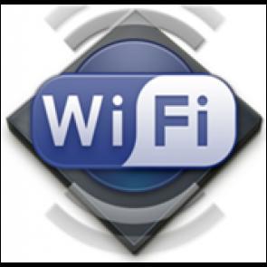 OPTION module externe WIFI pour usage professionnel.