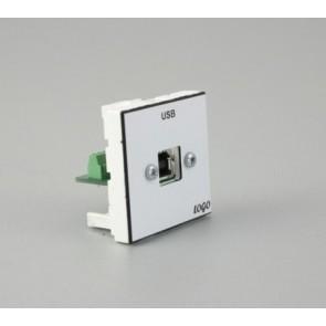 Plastron 45 + embase USB B F raccordée sur bornier à vis